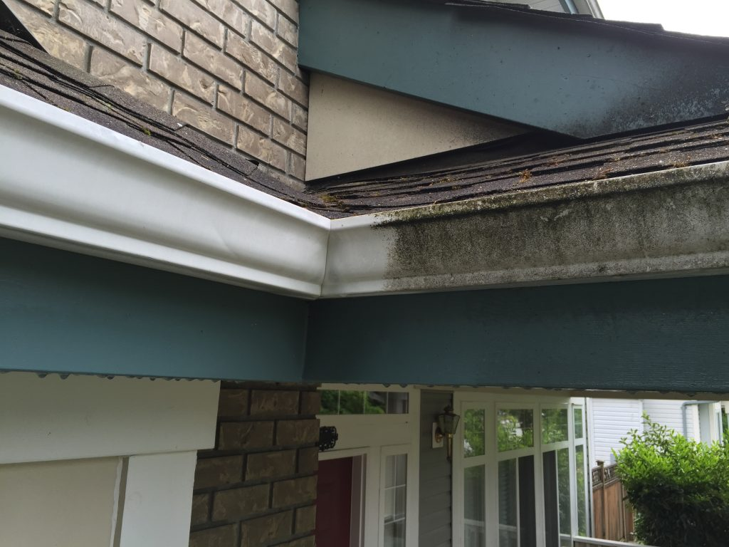 30-seconds-cleaner-gutters-cleaner-after